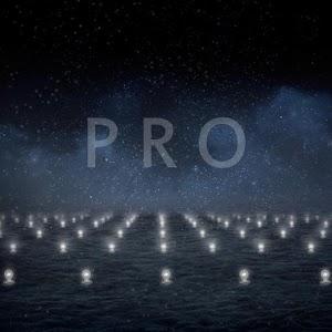 Light bulbs on a field LWP PRO 個人化 LOGO-阿達玩APP