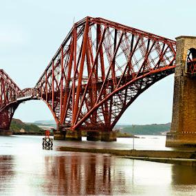 Rail Forth Bridge by Vinod Chauhan - Buildings & Architecture Bridges & Suspended Structures ( scotland, railroad tracks, railforth bridge, transportation, architecture, bridge )