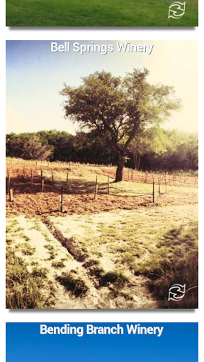 TX Hill Country Wineries Guide