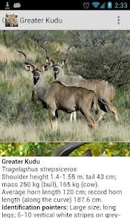 Mammals of Southern Africa- screenshot thumbnail