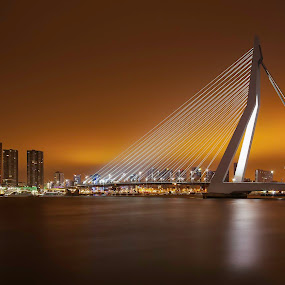 Rotterdam by Steve De Waele - Buildings & Architecture Bridges & Suspended Structures ( rotterdam, color, cityscape, bridge )