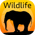 LBE Wildlife Photography icon