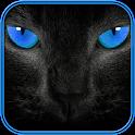 suoni gatto e carta da parati icon
