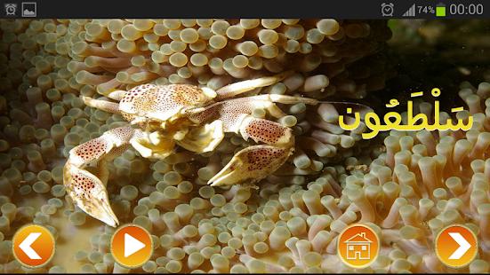 عالم الحيوانات - screenshot thumbnail