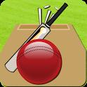 Cricket Record 2011 icon