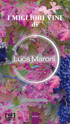 I Migliori Vini italiani 2015