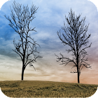 Twin Trees - Live Wallpaper icon