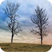 Twin Trees - Live Wallpaper