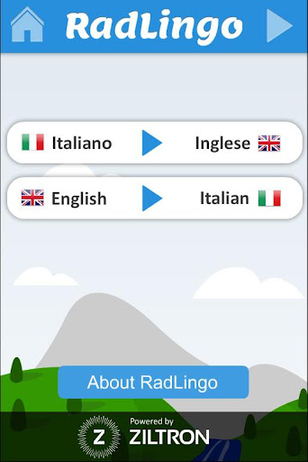 Radlingo: Radiology Phrasebook