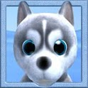 Dog Runner icon