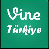 Türk Vine Fenomenleri