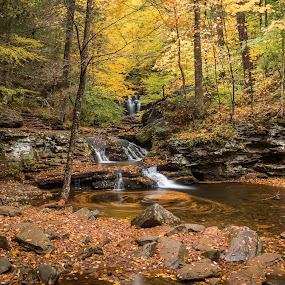 by Michael Sharp - Landscapes Waterscapes ( luzerne county, pa, fall foliage, waterfall, waters meet )
