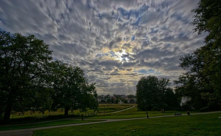 Cloudy day @ Sonsbeek Arnhem by Iris Beukhof - Landscapes Cloud Formations ( clouds, wolken, natuur, city park, arnhem, beukiegirl, sonsbeek,  )