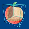 CTvox icon
