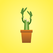 Lucky Bamboo Luck Booster Free