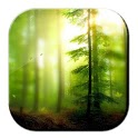 Xperia E Forest Margin icon