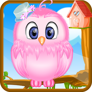 Baby Owl Care for PC and MAC