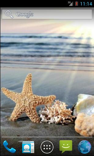 Sea Star HD. Live Wallpaper.