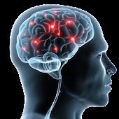 Skeletal Radiology Review