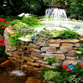 Garden Fountain Live Wallpaper
