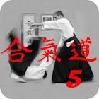 Aikido Fifth Kyu (Free) icon