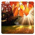 autumn live wallpapers icon