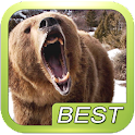 Bear Sound Effect Roar