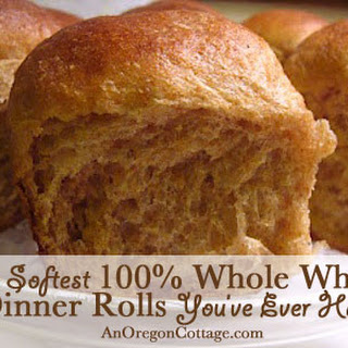 Soft 100% Whole Wheat Dinner Rolls.