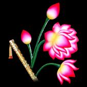 ShreeNathji ( Krishna Radha )