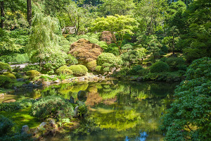 The upper pool at the Japanese Garden in Portland, Oregon.