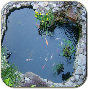 Download koi pond apk on pc download android apk games for Koi pond game