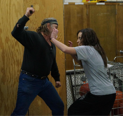 SELF DEFENSE / STREET FIGHTING - screenshot