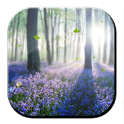 Forest Lavender Free LWP icon