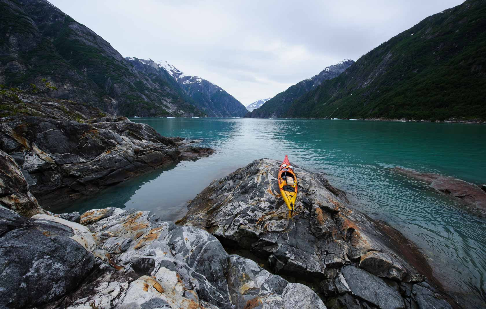 Sawyer Island , Tracy Arm, Tongass National Forest