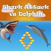 Shark Attack vs Dolphin