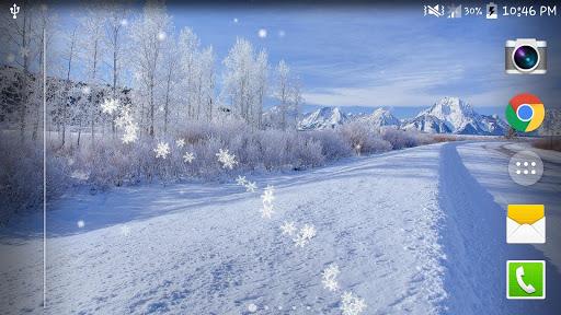 冬の雪ライブ壁紙無料(PRO)