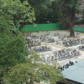 Bicycle Parking by Jed Mitter - Transportation Bicycles ( bicycles, parking lot, taiwan, taipei )
