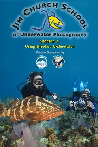 Under Water Strobes
