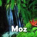 Tropic rain forest stress icon