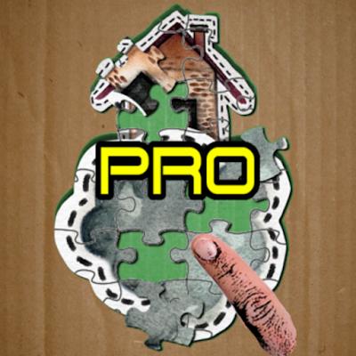 Sliding Crazy Puzzle Pro