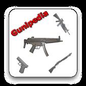 Gun Info Grabber
