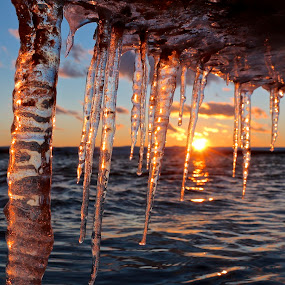Behind the Ice by Jeremy Church - Nature Up Close Other Natural Objects ( water, michigan, lake michigan, puremichgan, ice, sunset )