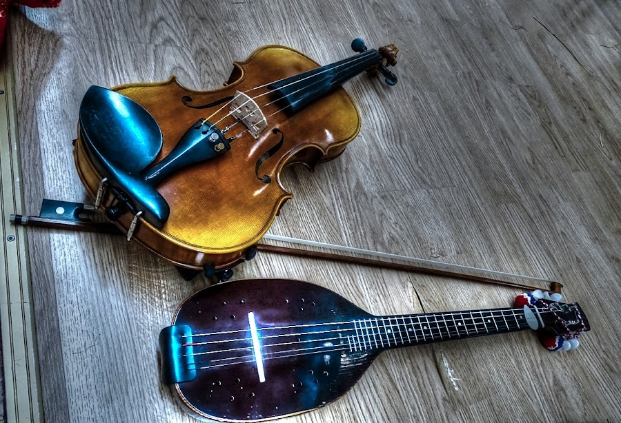 Violin and tambura by Tihomir Beller - Artistic Objects Musical Instruments