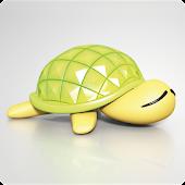 Turtle Mileage