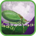 Noisy Bug Sing Along icon