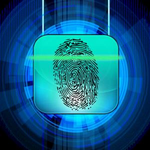 Lie detector, Scan  1.0.8