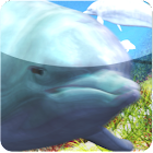 dolphin free live wallpaper icon