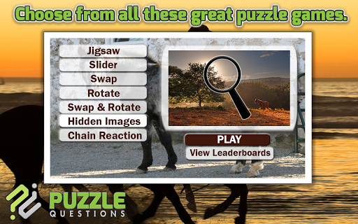 More Horse Puzzle Games