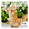 Jigsaw Puzzles: Cute Cats