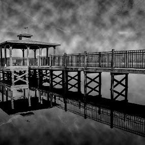 Lake Warren Pier by Michael Shaffer - Black & White Landscapes ( detail, michael shaffer, white, sc, lake, lake warren, dock, south carolina, michael, pier, shaffer, fishing, pond, black,  )
